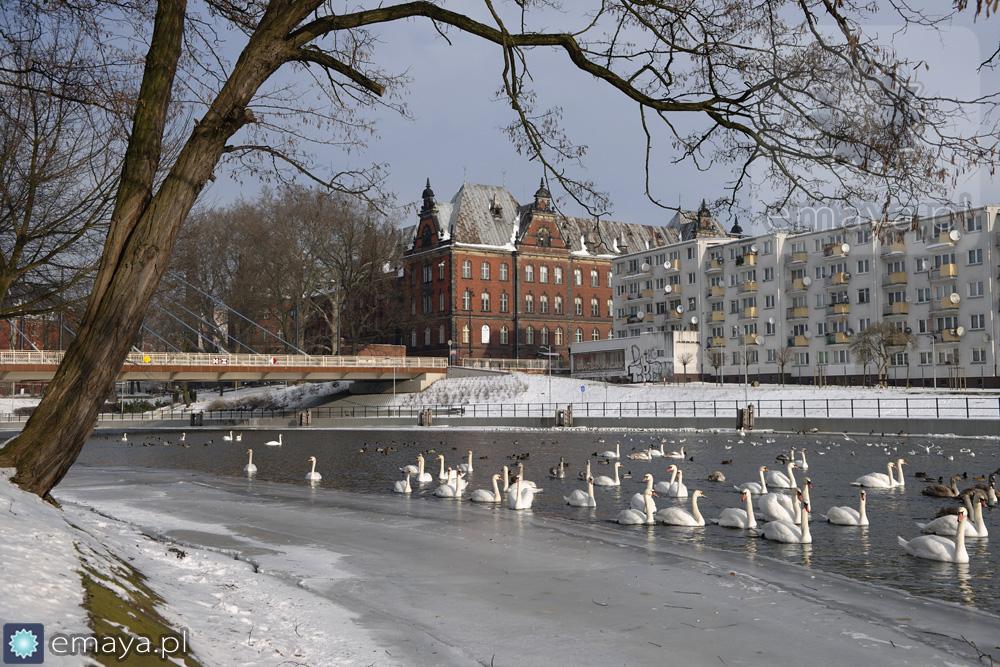 zima w bydgoszczy 2014