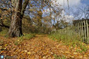 jesienny_krajobraz.jpg
